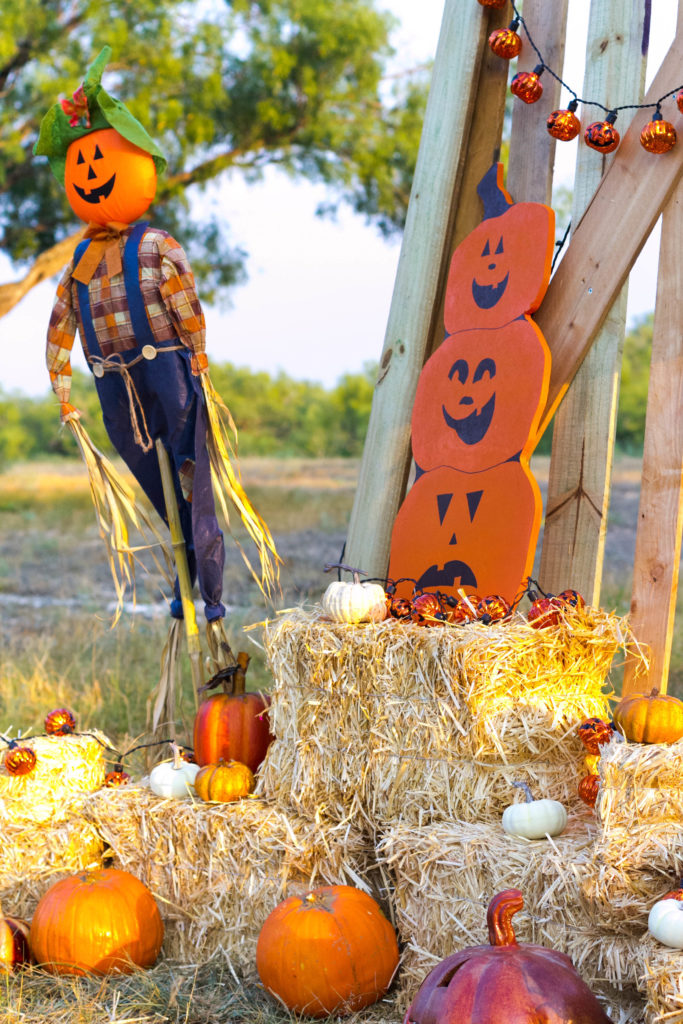 halloween-pumpkin-patch-fall-decorating-ideas-by-iris-nacole-com