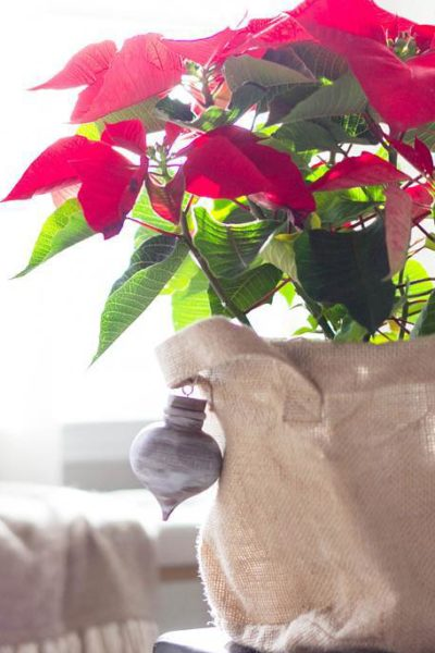Holiday Hostess Gift Idea (Contributor Post on A Blissful Nest)