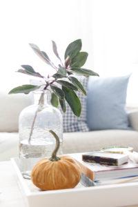 Neutral Fall Decoration-Decor Inspriation by IrisNacole.com