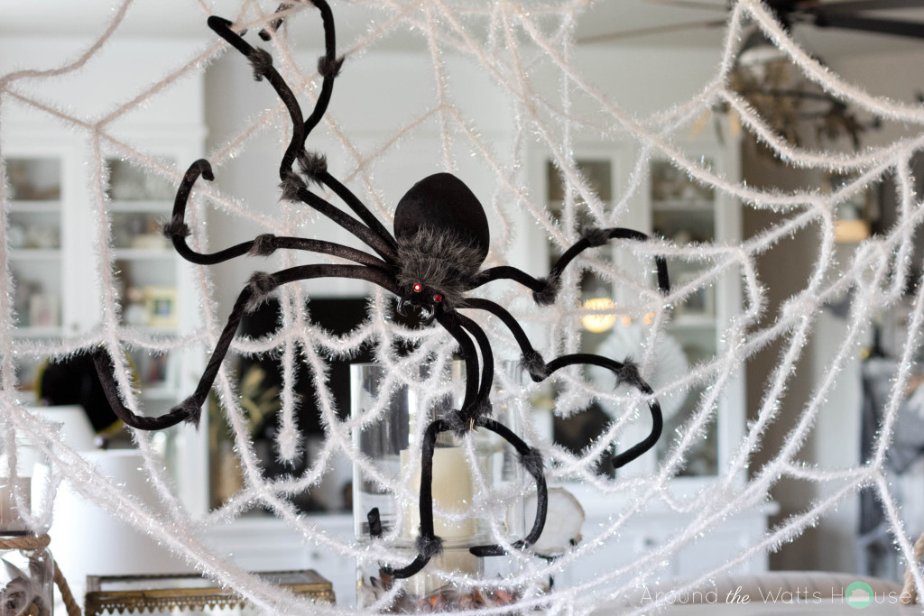 Spooky-Spider-Web