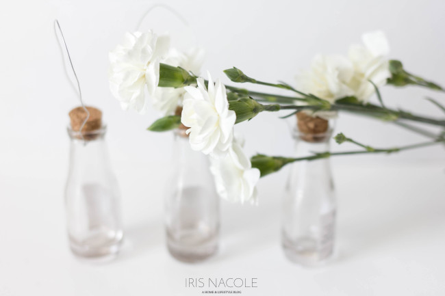 Hanging-Bottle-Flower-Vase-