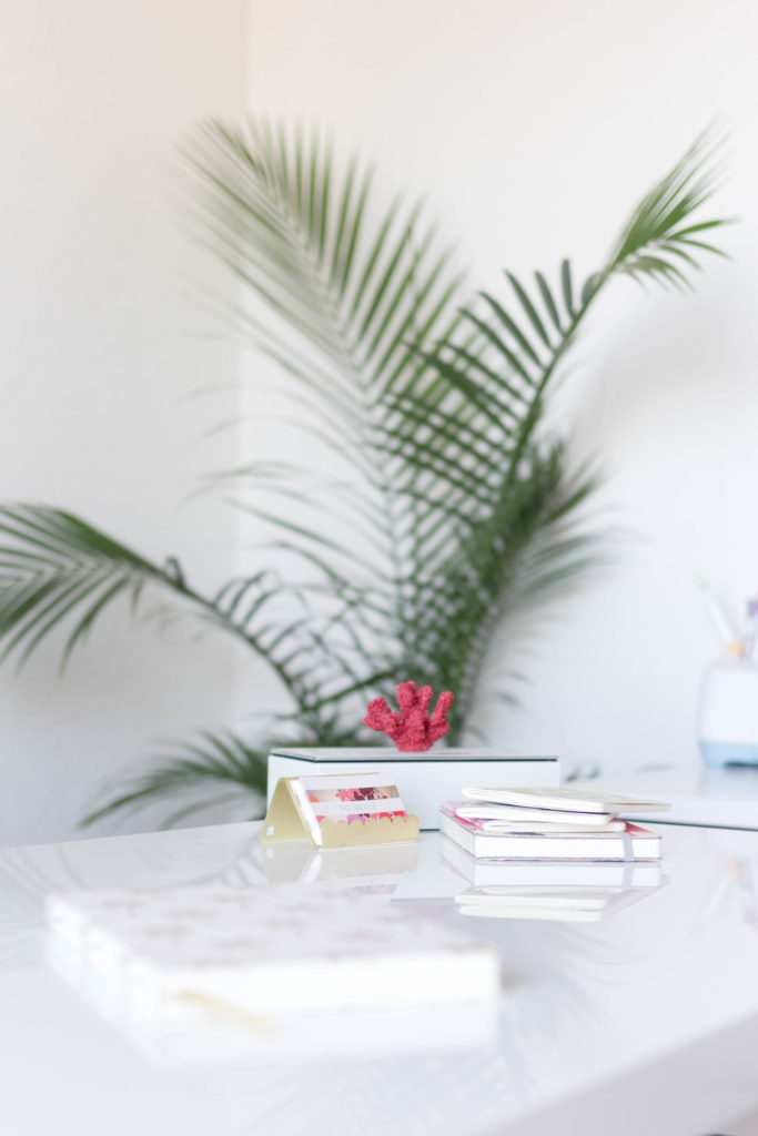 Desktop Accessories-new-year-new-room-office-refresh-a-tropical-chic-home-office-IrisNacole.com