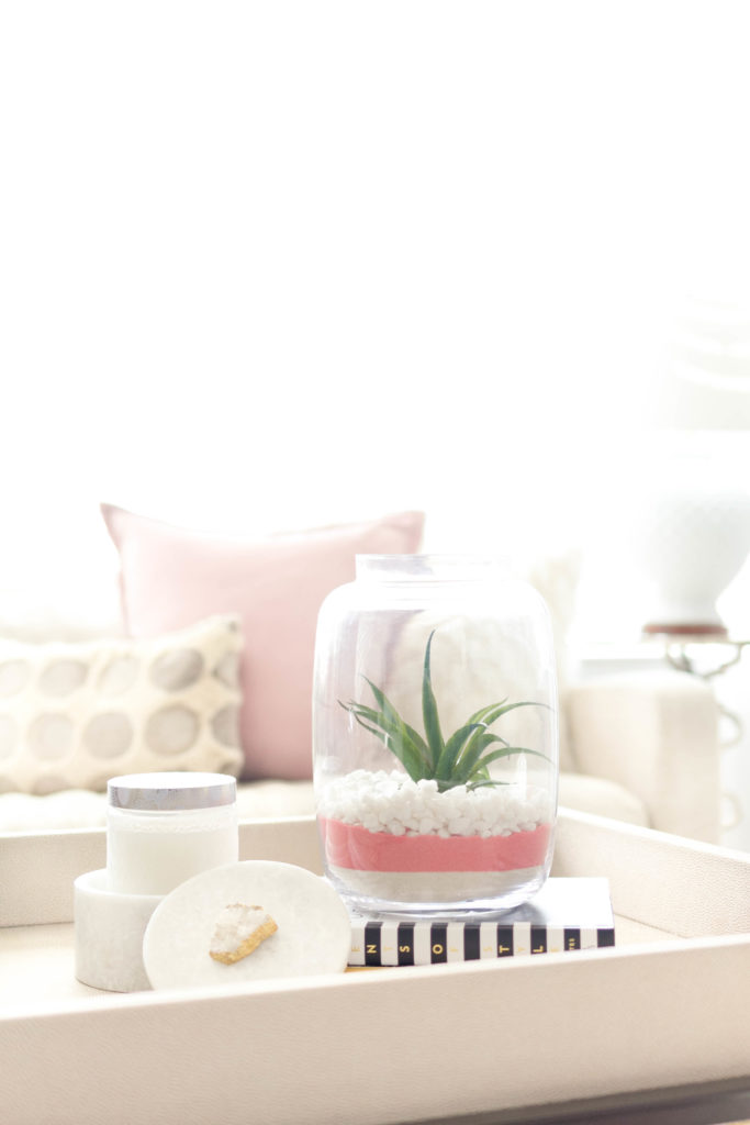 valentines-day-decor-craft-succulent-IrisNacole.com
