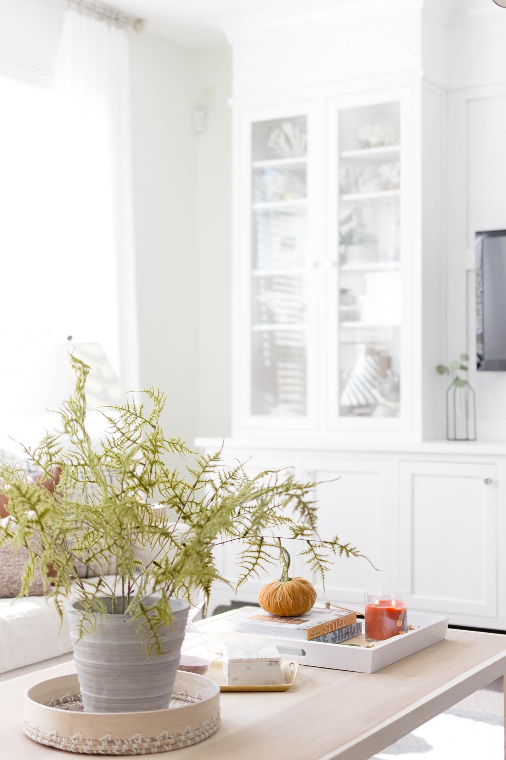 Simple and cozy fall decorating, Living Room Tour-IrisNacole.com